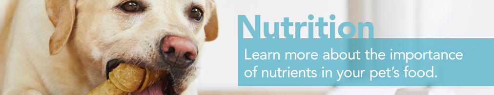 banner-nutrition