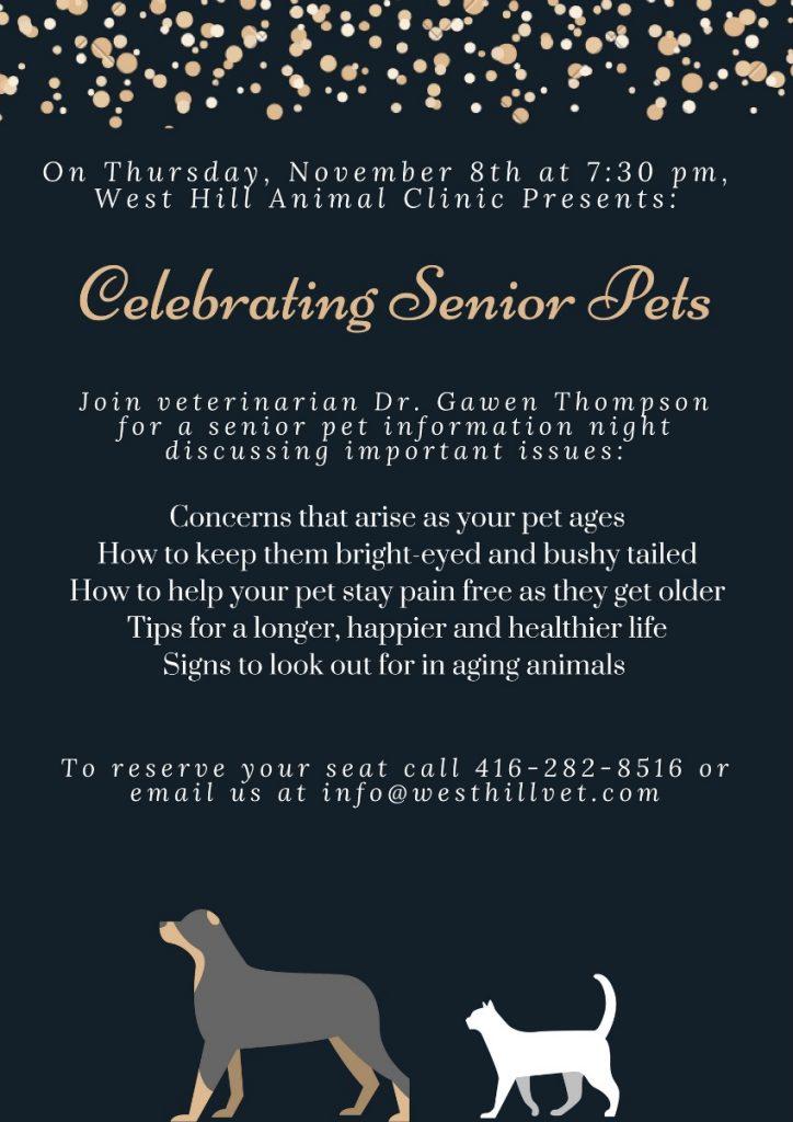 senior pet night