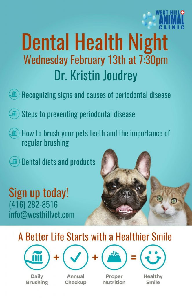 West Hill Animal Clinic Dental Health night event poster