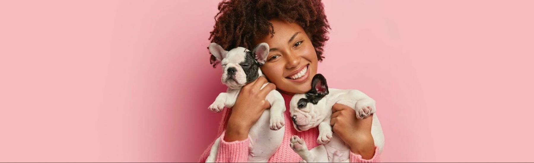 Owner holding two puppies